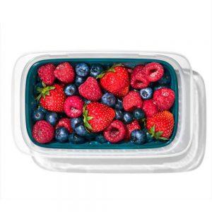 OXO Lekvrije Lunchbox vergiet 450 ml